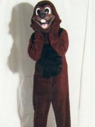Beaver (Groundhog)
