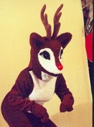Rudolph ( Reindeer)